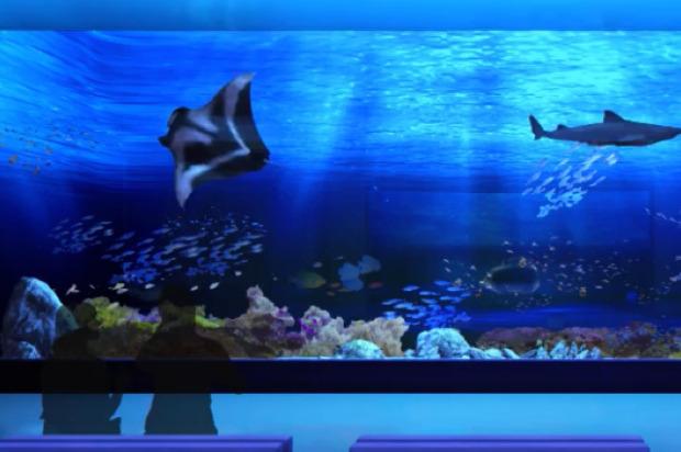 dmm-aquarium02