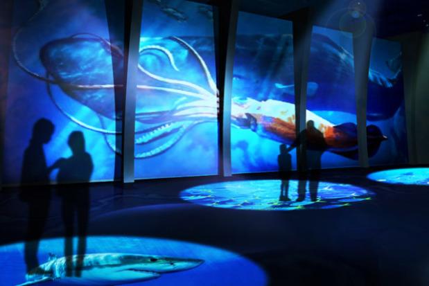 dmm-aquarium03